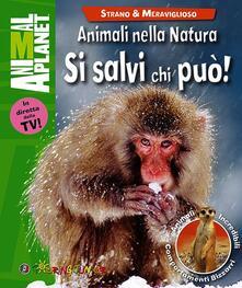 Antondemarirreguera.es Animali nella natura. Si salvi chi può! Image