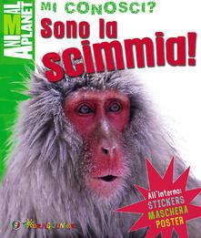 Antondemarirreguera.es Sono la scimmia! Con gadget Image