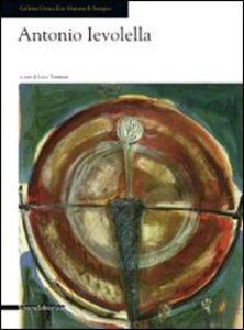 Libro Antonio Ievolella. Opere recenti. Catalogo della mostra (Seregno, 17 settembre-9 ottobre 2011)