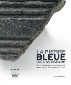 Libro La pierre bleue de l'Avesnois. Entre paysage et architecture. Les collections du Forum Antique de Bavay Sébastien Cormier