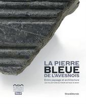 La pierre bleue de l'Avesnois. Entre paysage et architecture. Les collections du Forum Antique de Bavay