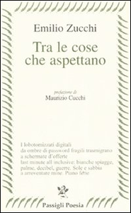 Libro Tra le cose che aspettano Emilio Zucchi