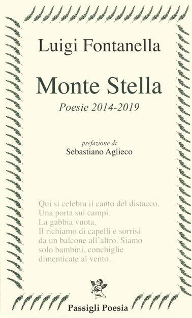 Monte Stella (poesie 2014-2019) - Luigi Fontanella - Libro - Passigli -  Passigli poesia | IBS