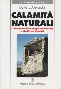 Libro Calamità naturali David E. Alexander