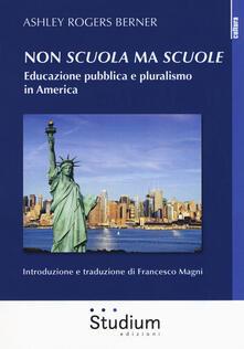 Daddyswing.es Non «scuola» ma «scuole». Educazione pubblica e pluralismo in America Image