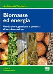 Foto Cover di Biomasse per la produzione di energia. Produzione, gestione e processi di trasformazione, Libro di Silvana Castelli, edito da Maggioli Editore