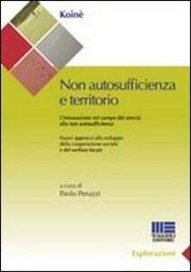 Libro Non autosufficienza e territorio. L'innovazione nel campo dei servizi alla non autosufficienza