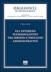 Gli interessi plurisoggettivi tra diritto e processo amministrativo