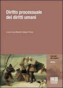 Libro Diritto processuale dei diritti umani Luca Mezzetti , Calogero Pizzolo