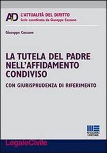 Foto Cover di La tutela del padre nell'affidamento condiviso, Libro di Giuseppe Cassano, edito da Maggioli Editore