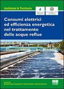 Libro Consumi elettrici ed efficienza energetica del trattamento delle acque reflue Massimiliano Campanelli , Paola Foladori , Mentore Vaccari