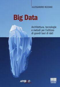 Libro Big data. Architettura, tecnologie e metodi per l'utilizzo di grandi basi di dati Alessandro Rezzani