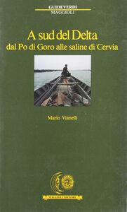 Foto Cover di A sud del delta. Dal Po di Goro alle saline di Cervia, Libro di Mario Vianelli, edito da Maggioli Editore