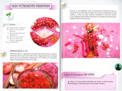 Libro La bellezza a fior di pelle. Creme, impacchi e lozioni naturali da preparare in casa Vira Carbone 1