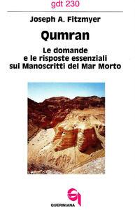Qumran. Le domande e le risposte essenziali sui manoscritti del Mar Morto