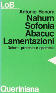 Libro Nahum, Sofonia, Abacuc, Lamentazioni. Dolore, protesta e speranza Antonio Bonora