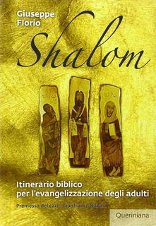 Parcoarenas.it Shalom. Itinerario biblico per l'evangelizzazione degli adulti Image