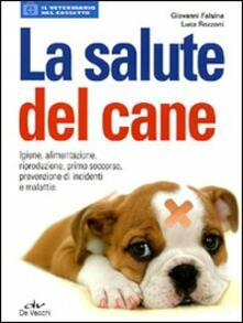 Squillogame.it La salute del cane Image
