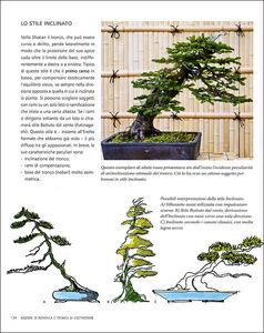 Libro L' arte del bonsai. Storia, estetica, tecniche e segreti di coltivazione Antonio Ricchiari 1