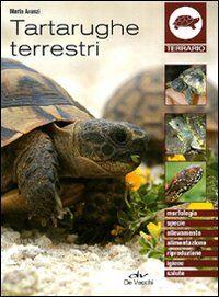 Tartarughe terrestri