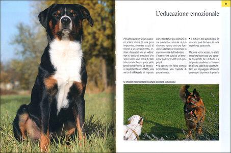 Libro Il galateo per il cane. Manuale di educazione sociale per una buona convivenza Roberto Marchesini 1