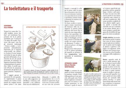 Libro Il libro completo dell'equitazione. L'allenamento e i diversi tipi di monta Vincenzo De Maria 2