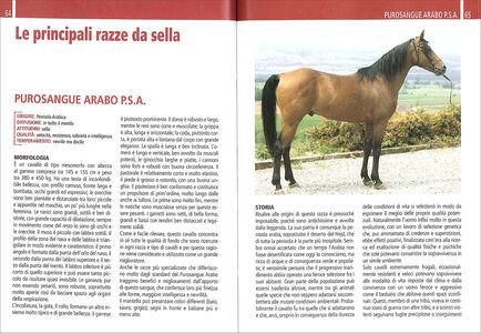 Libro Il libro completo dell'equitazione. L'allenamento e i diversi tipi di monta Vincenzo De Maria 3