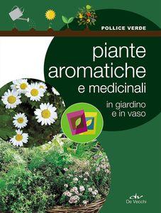 Libro Piante aromatiche e medicinali in giardino e in vaso