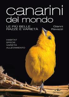 Antondemarirreguera.es Canarini del mondo. Le più belle razze e varietà. Ediz. illustrata Image