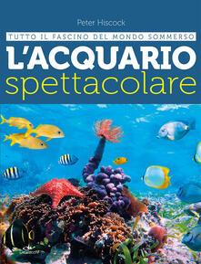 Filmarelalterita.it L' acquario spettacolare. Tutto il fascino del mondo sommerxo Image