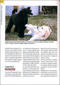 Foto Cover di Comprendere il linguaggio del cane. Come conoscerlo e interpretarlo in ogni situazione, Libro di Valeria Rossi, edito da De Vecchi 3