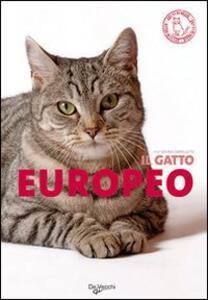 Il gatto europeo