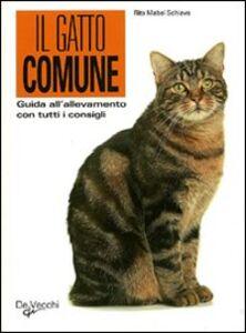 Libro Guida al gatto comune Rita M. Schiavo
