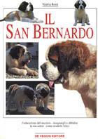 Il san Bernardo