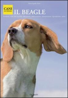 Beagle - copertina
