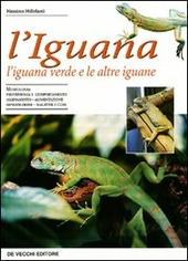 L' iguana. L'iguana verde e le altre iguane