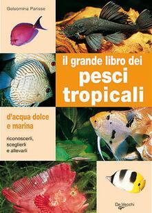 Rallydeicolliscaligeri.it Il grande libro dei pesci tropicali. D'acqua dolce e marina Image