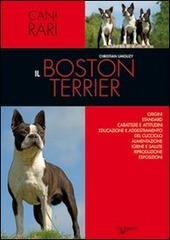 Il Boston terrier