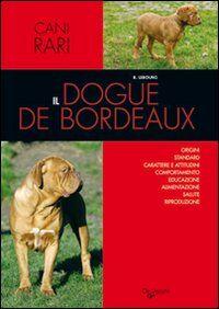 Il dogue de Bordeaux