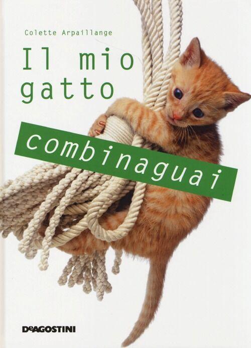 Il mio gatto combinaguai