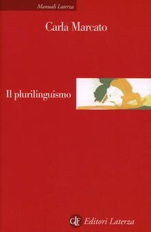 Il plurilinguismo.pdf