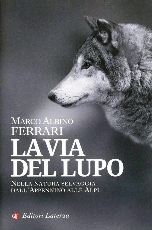 Favoloso La via del lupo. Nella natura selvaggia dall'Appennino alle Alpi  TT95