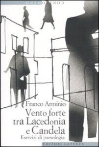 Libro Vento forte tra Lacedonia e Candela. Esercizi di paesologia Franco Arminio