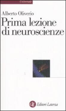 Criticalwinenotav.it Prima lezione di neuroscienze Image