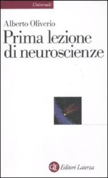 Parcoarenas.it Prima lezione di neuroscienze Image