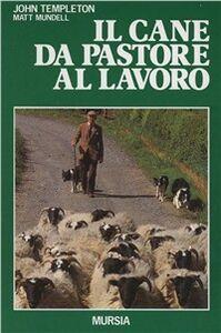 Libro Il cane da pastore al lavoro. Cura e addestramento John Templeton , Matt Mundell