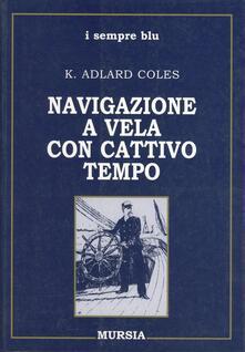 Librisulrazzismo.it Navigazione a vela con cattivo tempo Image