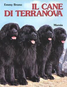 Libro Il cane Terranova Emmy Bruno