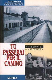 Tu passerai per il camino - Vincenzo Pappalettera - copertina