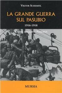 La grande guerra sul Pasubio 1916-1918